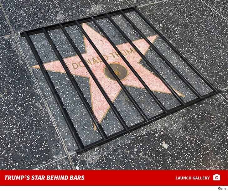 Trump's Star Behind Bars