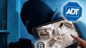 Americans Beef Up Home Security, Brace for Worst of the Pandemic