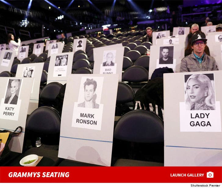 2019 Grammy Awards Seating Chart