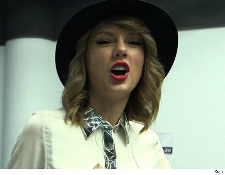 Taylor Swift Sued Over Shake It Off You Ripped Off Hater S Gonna Hate Update