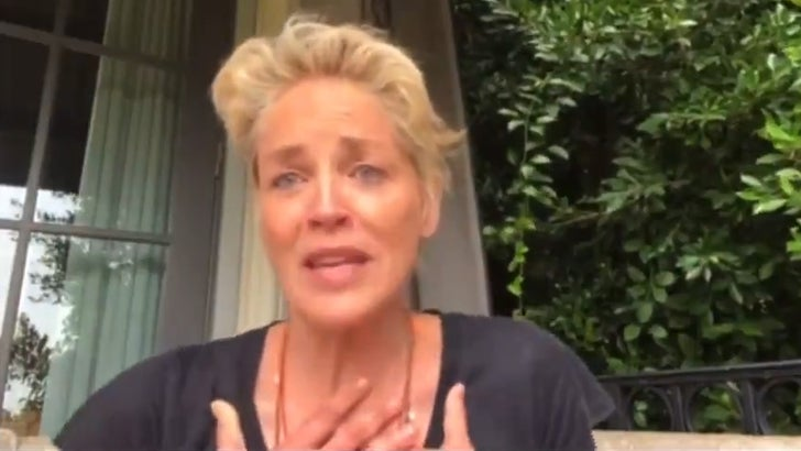 Sharon Stone Says She's Being 'Threatened' for Demanding COVID Testing on Set.jpg