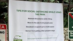 Runyon Canyon Hikers Urged to Not Pet Dogs in Wake of Coronavirus