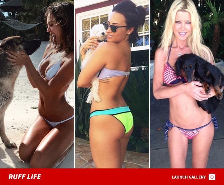 Stars Ruffin' It in Bikinis ... Hot, Dog!