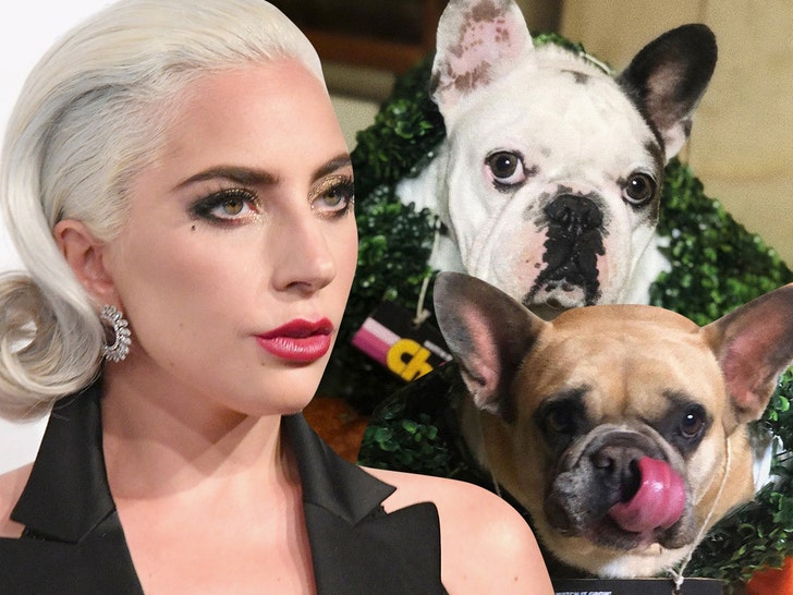 Lady Gaga Dognappers May Have Picked Singer as Ransom Target.jpg