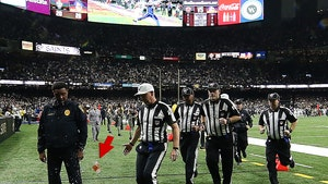 Saints Fans Pelted Refs With Trash After Non-PI Call In Vikings Playoff Game