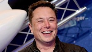 Elon Musk Hit Up Texas Officials About Founding Starbase City