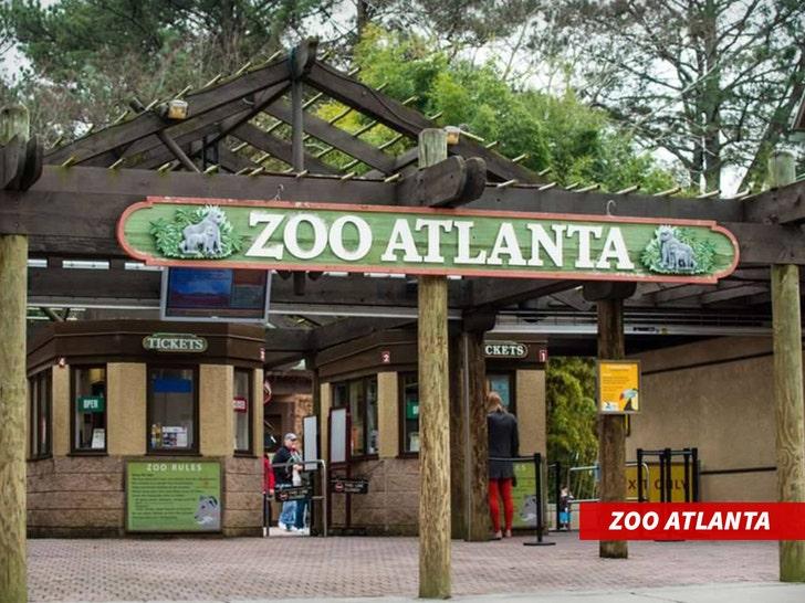 zoo d'atlanta