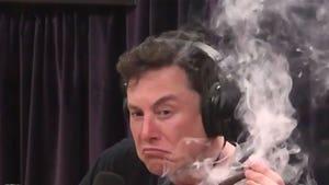 Tesla Stock Plummets After Elon Musk Smokes Weed With Joe Rogan