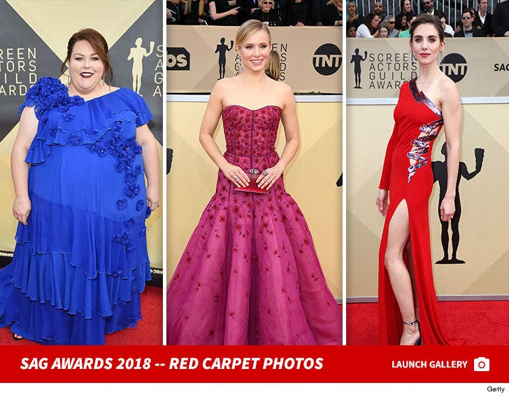 24th Annual Screen Actors Guild Awards 2018 Red Carpet Photos