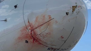 Utah Jazz Make Emergency Landing After Plane Collides With Birds