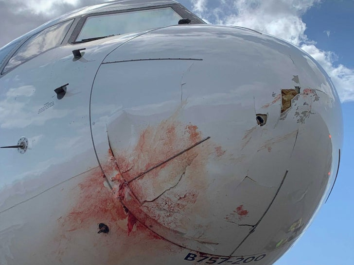 Utah Jazz Plane Accident