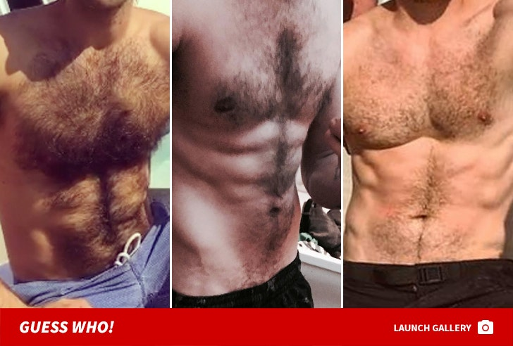 Grizzly Guys -- Guess Whose Hairy Chest!