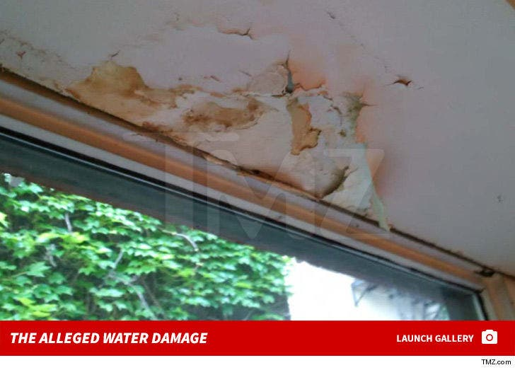 Justin Theroux -- The Alleged Water Damage
