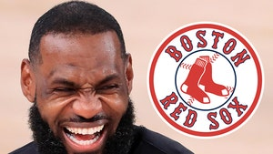 LeBron James Becomes Part Owner of Boston Red Sox