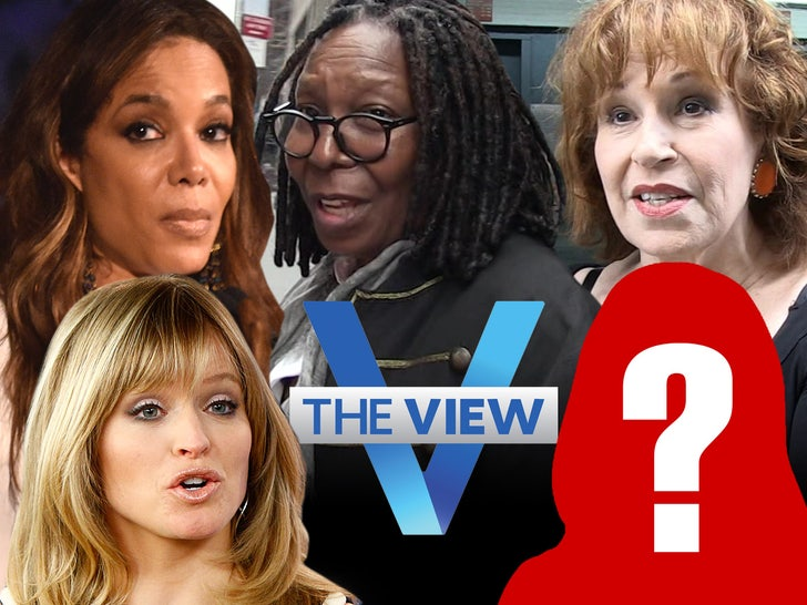 'The View' in No Rush to Replace Meghan McCain, But Want a Conservative.jpg