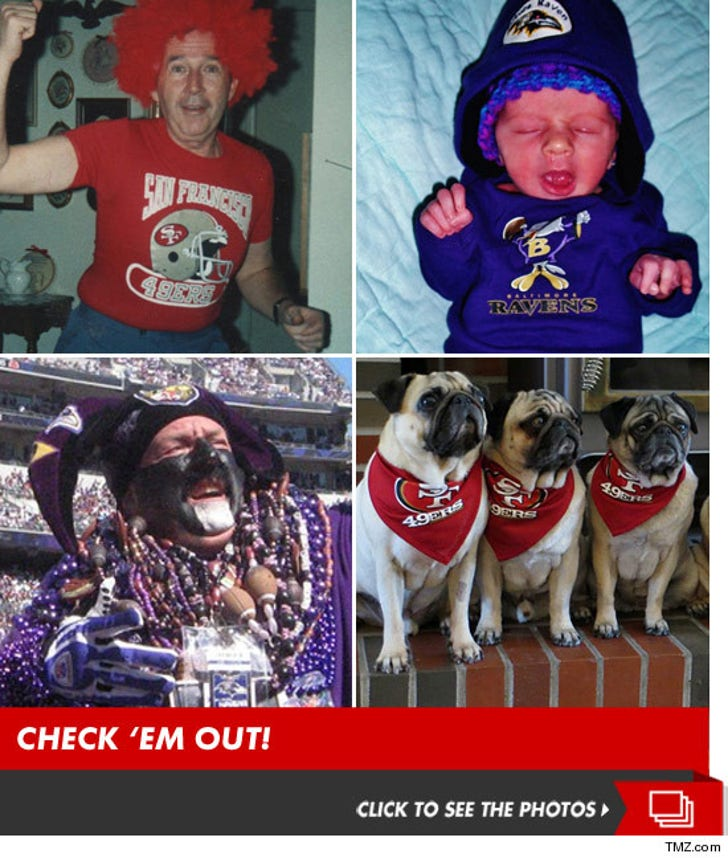 TMZ's 49ers vs. Ravens Fan Photo Contest