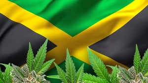 Jamaica Experiencing Marijuana Shortage Due to Drought and Pandemic