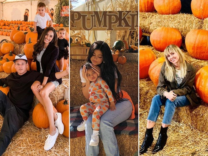 Celebs At The Pumpkin Patch 2019
