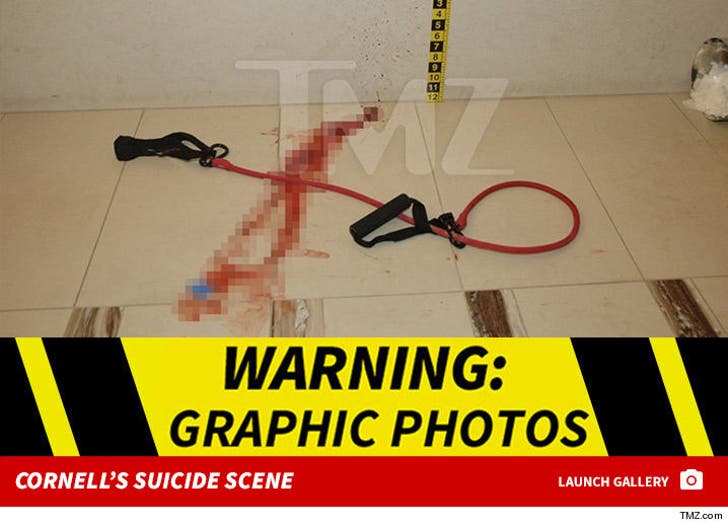 Chris Cornell Police Photos