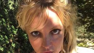 Britney Spears' Dogs Taken Away, She Blames Jamie