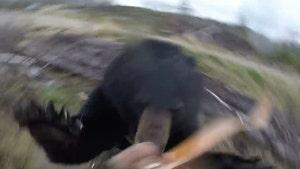 Bear Attacks Hunter, Hunter Somehow Survives (VIDEO)