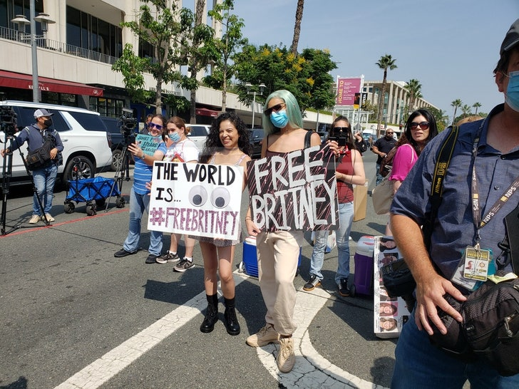 Free Britney Rally Outside Of Court