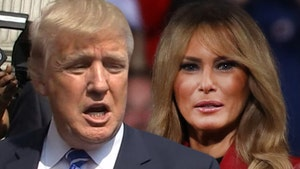 Donald Trump Says 'Elitist Snobs' in Fashion Biz Kept Melania Off Magazine Covers