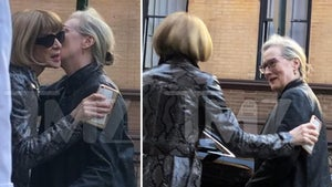 Meryl Streep & Anna Wintour's 'Devilish' Power Lunch in NYC