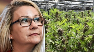 VA Senator Denies Marijuana Tweet, Says Duplicate Account Isn't Her