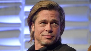 Brad Pitt Denies Contacting Woman Suing Him for Possible Catfish Situation