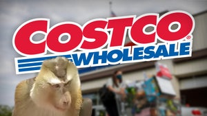 Costco Pulls Coconut Milk Brand Due to Monkey Labor Allegation