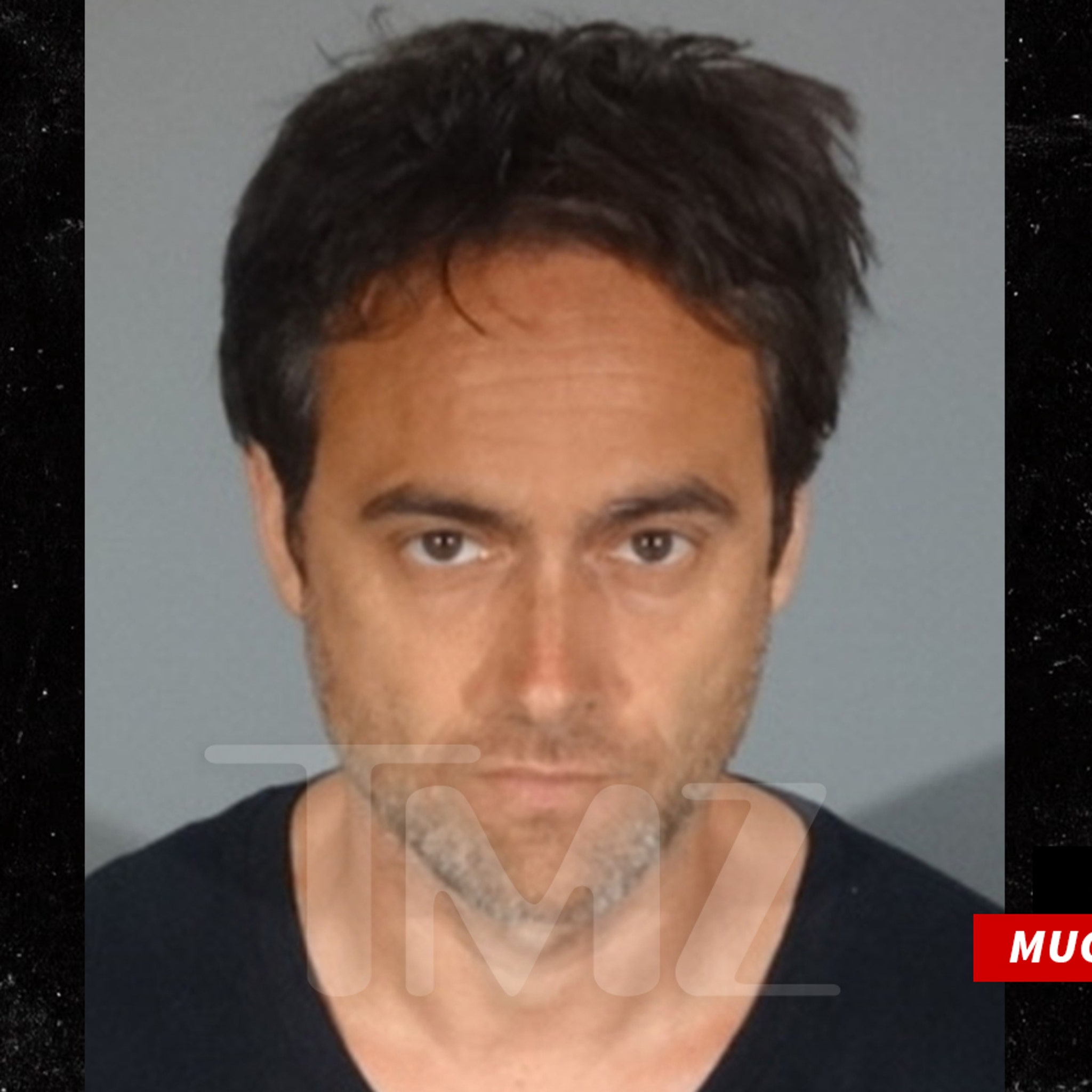 Stuart Townsend Arrested for Felony Domestic Violence
