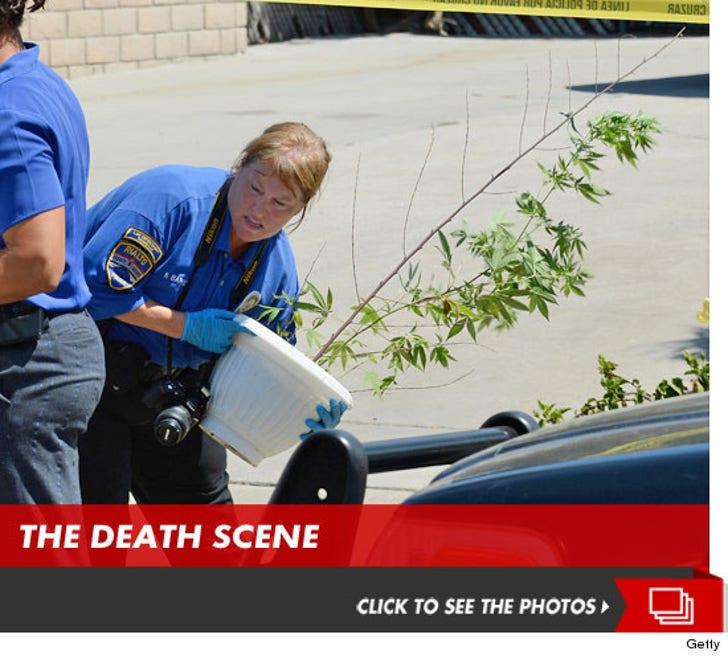 Rodney King -- The Death Scene