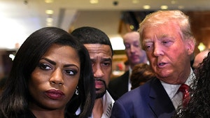 Omarosa's Book on Trump is 'Explosive' and 'Jaw-Dropping'