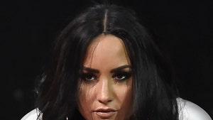 Demi Lovato Fires Back at Negative Comments Over Anti-Trump Track