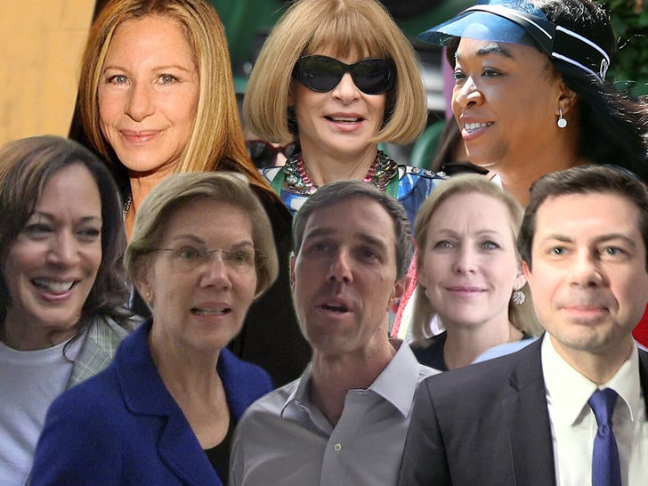 Celebs Like Streisand, Wintour Donating to Multiple Presidential Candidates