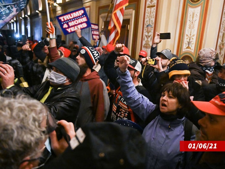 Gun Sales Surging Following Capitol Riots, Dems and Republicans Stocking Up 4