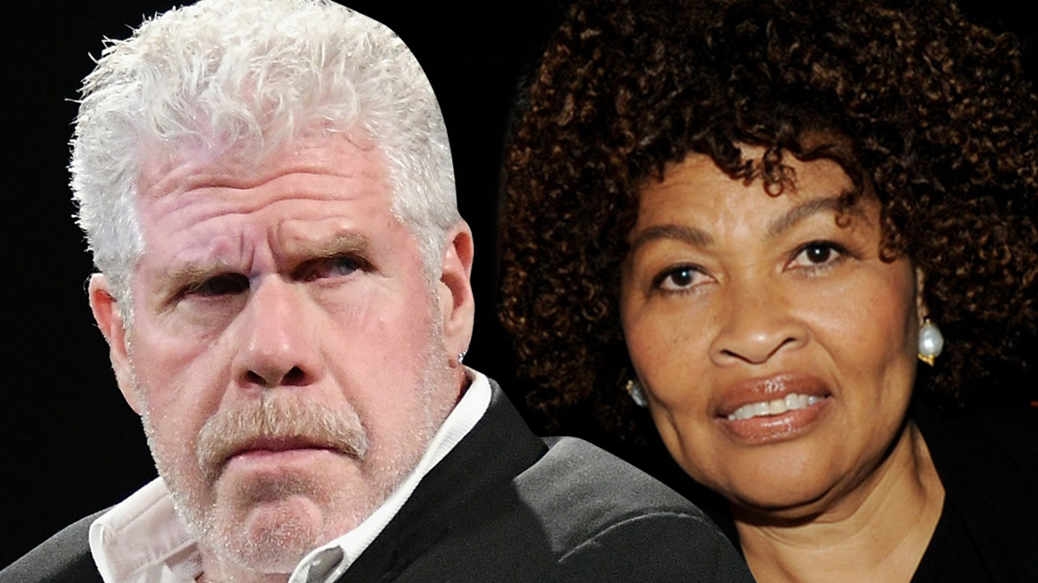 Ron Perlman Asks Judge to Declare Him Single, Wants to Remarry