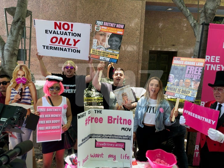 Free Britney Protesters Outside Of Court