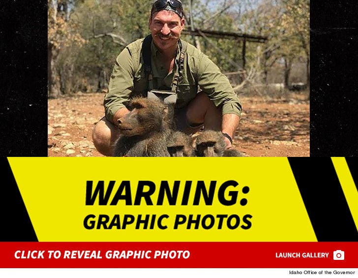 Blake Fischer Resigns After Killing Family Of Baboons in Africa