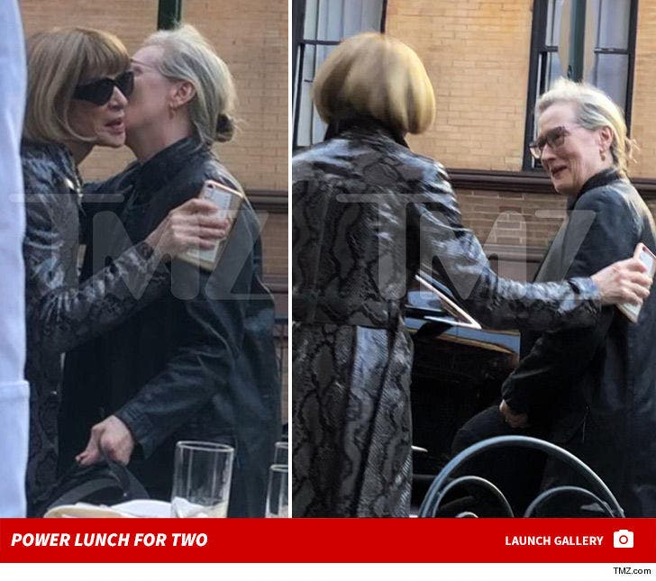 Meryl Streep and Anna Wintour -- Power Lunch in NYC