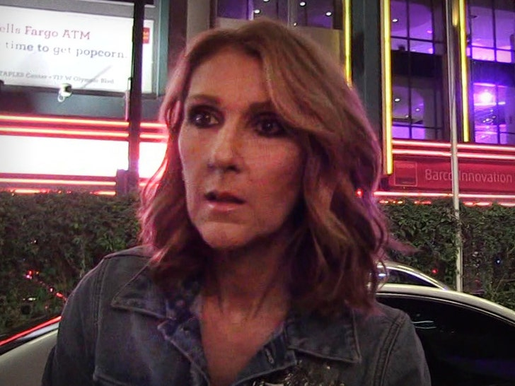 Celine Dion Delays Opening of New Las Vegas Show Due to Muscle Spasms.jpg