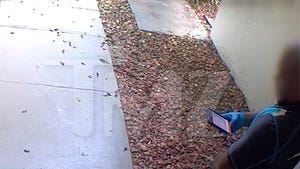 Amazon Delivery Driver Caught on Video Peeing in Front of Door
