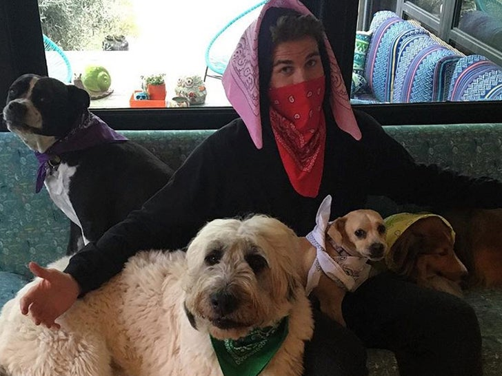 Miley Cyrus And Liam Hemsworth's Pet Pics