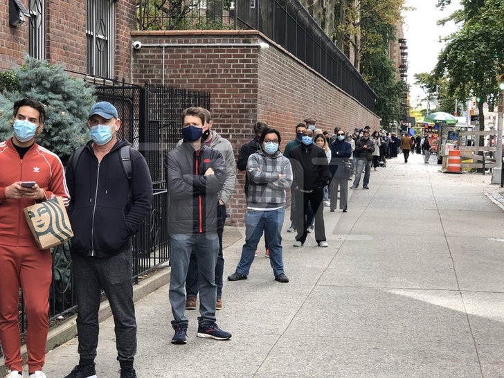 Early Voting Line in New York City
