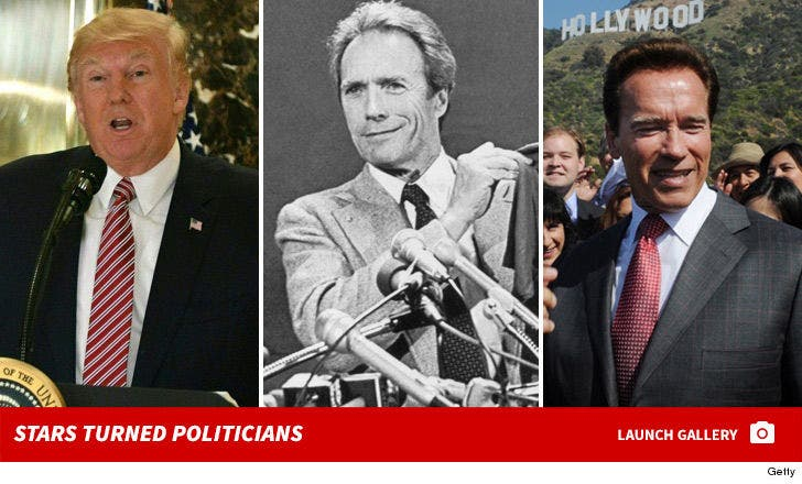 Stars Turned Politicians