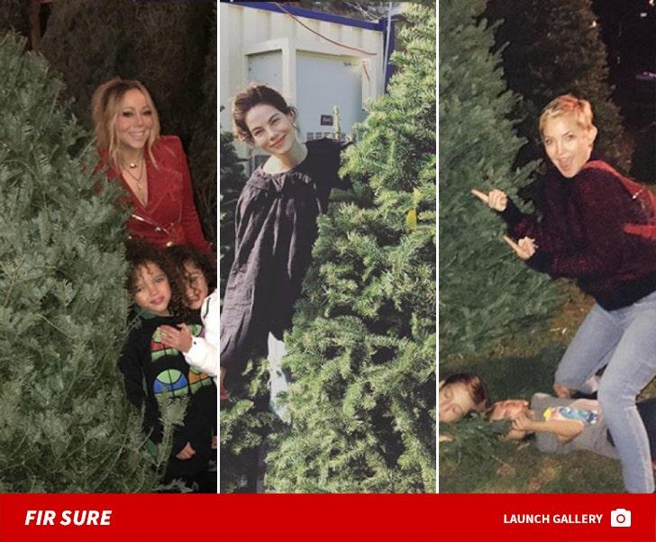 Celebs Hunting For Christmas Trees
